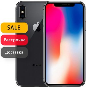 iPhone X 64Gb Space Gray RU/A